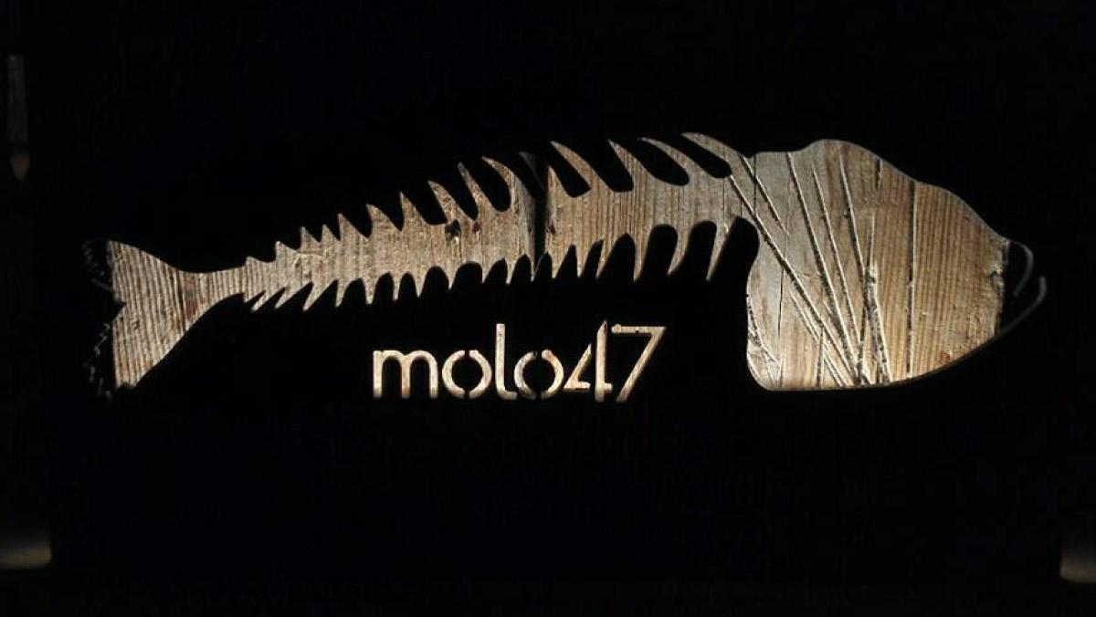 MOLO 47-9